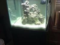 60 gallon saltwater tank set up Heater Thermometer live