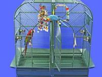 ***Awesome Cage for Larger Parrots & Breeder Pairs***