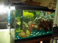 65 Gallon Tall Aquarium, Marineland Emperor 400 Filter,