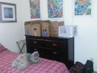 Room for Rent in a 1150 SF, two bedroom apartment: $