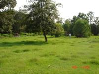 $65,500 ....5 acres with older 3 bedroom trailer, well,