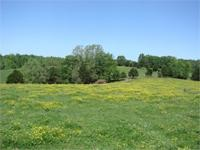 A2614 - 6698 Edmonton Rd. Columbia, KY - This beautiful
