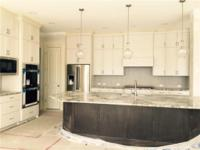 Brand new completed construction. 3car garage, dramatic