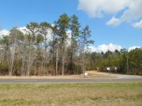 7 Beautiful Acres off Hwy 29. Place: Cantonment, FL.