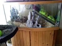 Selling a 72 gal.bow tank with stand.Oak colored and