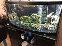 sold as seen Tank and stand and glass lids and 100 lbs