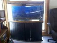 72 Gallon bow front. Fish tank, salt water setup has