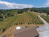 DK Cellars is a turn-key winery operation located