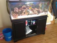 We have a mint condition 6 month old 75 gallon salt