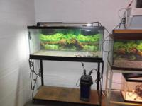 I have 2 75 gallon aquariums for sale 1. recently
