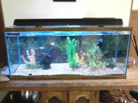 I have a 75 gallon fish tank that comes with the