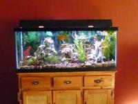 75 Gallon Fish Tank with Stand, filtration system,