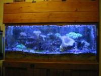 75 gallon reef tank, drilled with internal overflow,