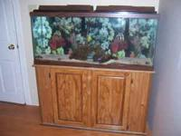 I have a 75 gallon salt aquarium for sale $225.00 OBO.