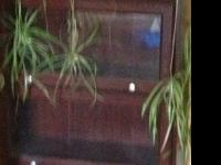 $75.00 each mahogany colored 4 glass doors ea legal