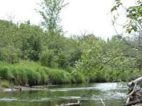 For Lease - (2.5 Acres) on the Paleface River near