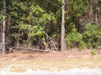 This wooded lot is located towards the end of Big