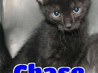 #79 Chase's story 'Hello. My name is Chase and I'm one