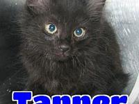 #79 Tanner's story 'Hello. My name is Tanner and