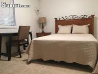 Fully furnished basement plus den/ tv room for rent in