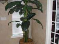 Two 8 foot silk palm trees with metal African accented