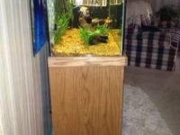 80 gallon complete set up. Comes with everything you