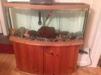4 foot large by 18 inches. The tank itself is 23 inches