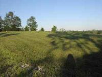 Nine and 3/4 acres of land in Piner, Northern KY with a
