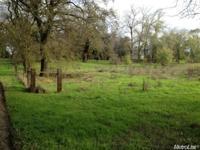 Stunning 3.3 acres of level to carefully rolling land