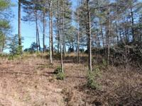 Fantastic Golf Course Frontage, 2 lots at Cherokee