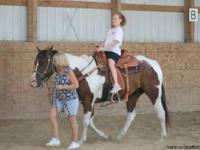 Sonny is a 9 year old paint gelding, He is 15-15.3 H.