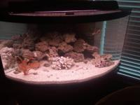 90 gal corner tank with rounded front glass Comes with