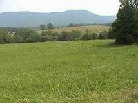 We are offering 8 Beautiful Acres of Land in Luttrell