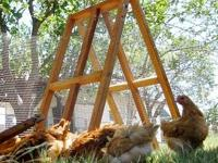 This is a very useful portable chicken fence/shelter.