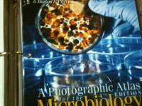 Title: A Photographic Atlas for the Microbiology
