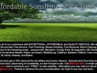 We are AAffordable Sonshine State Trees, Inc. and have