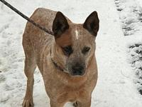 ACD Paris TX is HW+'s story Please contact Monica R