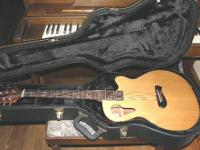 Taylor Acoustic Guitar Model 2010-310. The richness of