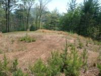 ACRE LOT NEAR I-26, HWY 11 AND LAKE BOWEN $12,500   147