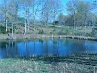 Beautiful 12 acres in rural Allen County. Perfect for