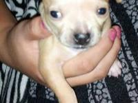 Just one little girl left!! She needs a good family.We