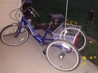 An adult 3-wheel bike. Great condition.  Tires just