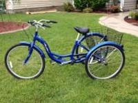 Type: Fitness Type: Equipment One Schwinn Meridian