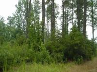 Description This 30 acre property is located on Highway