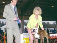 AKC Champion Sired litter born 12-6-12. Only 3 females