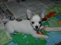 LITTLE SUZY NEEDS A NEW MAMMA OR DADDY !! Little Suzy