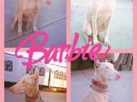 Barbie is Not for sale, only the Puppies are for