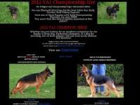 6 months old middlewest puppy black and red Utd on