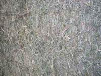 Call Tim at  #1 Quality Hay very leafy and fine stem