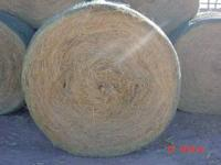 NOW AVAILABLE ALFALFA BALES 3 STRAND COME BY 1312 W.
